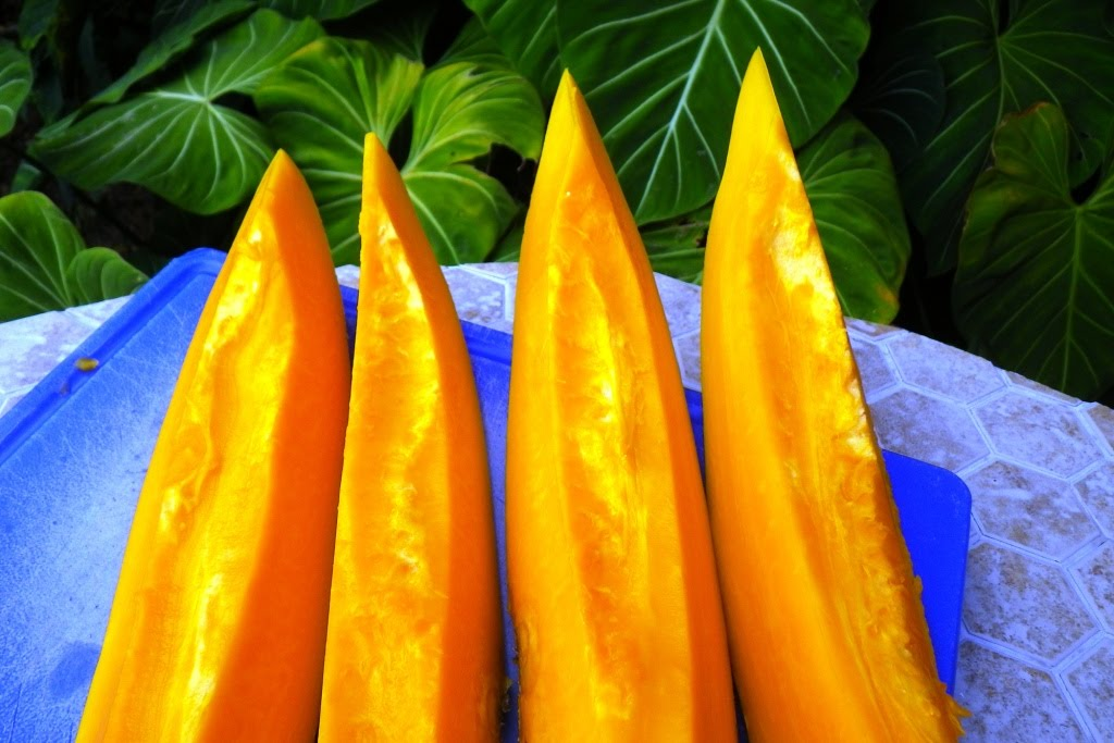 I ♥ Papaya